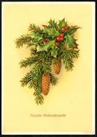 B3006 - Weihnachten Künstlerkarte - Tannenzweig - Reichenbach DDR 1963 - Sonstige