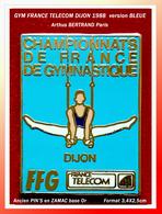 SUPER PIN'S GYM FRANCE TELECOM DIJON (21) : Version BLEUE Des Rectangles 1988, Signés Arthus BERTRAND Zamac Or - France Telecom