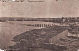 POSTCARD PORTUGAL - ABRANTES - ROCIO D'ABRANTES - AVENIDA MARGINAL ( DEMAGED ) - Santarem