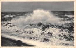 WESTENDE - Storm - Westende