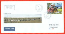 TAAF 2003. Birds. Envelopes Past The Mail. - French Southern And Antarctic Territories (TAAF)