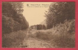 Habay-la-Neuve - Chemin De La Comtesse Vers La Trapperie ( Voir Verso ) - Habay