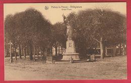 Habay-la-Neuve - Grand'Place ... Monument ( Voir Verso ) - Habay