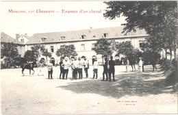 FR03 MOULINS - 10° Chasseurs - Examen D'un Cheval - Animée - Belle - Moulins
