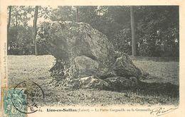 PIE-T-18-1204 : LION-EN-SULLIAS. LA PIERRE GARGOUILLE OU LA GRENOUILLE. MEGALITHE ? - Dolmen & Menhirs