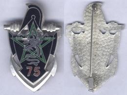 Insigne Du 75e Bataillon De Génie En Extrême Orient ( En Argent ) - Armée De Terre