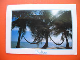 Life In The Tropics,Placencia - Belize