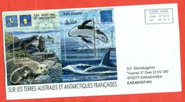 TAAF 2003.  Fauna. Envelopes Past The Mail. Block En Envelope. - French Southern And Antarctic Territories (TAAF)