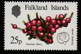 Falkland Islands 1983 Native Fruits 25 P Multicolored SW 399 ** MNH - Falklandinseln