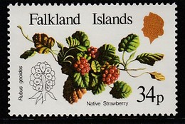 Falkland Islands 1983 Native Fruits 34 P Multicolored SW 400 ** MNH - Falklandinseln