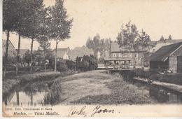 Halen - Haelen - Vieux Moulin - Oude Molen En Omgeving - 1907 - Uitg. Cleeremans En Saels 11910 - Halen