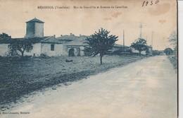 CPA 84  MERINDOL MAS DE BOURDILLE AVENUE DE CAVAILLON - Zonder Classificatie