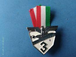 Alpini Gruppo 3° - Italia
