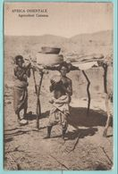 Africa Afrika Eritrea Costumi AOI Agricoltori Folklore Costumi - Costumi