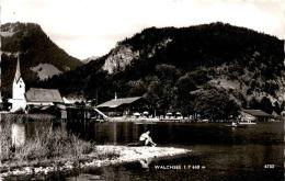 Walchsee In Tirol (6732) * 27. 7. 1962 - Österreich