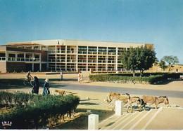 Tchad. N'Djamena. Fort-Lamy. Hôtel De Ville. Animée. Anes. - Tanzania