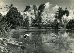 INDOCHINE/VUE DU GRAND LAC A HANOI (NORD VIETNAM)-PHOTO EPOQUE INDOCHINE FRANCAISE DU SERVICE PRESSE INFORMATION ARMEES - Photographs