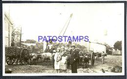 92331 PARAGUAY HELP GRANJA COSTUMES WOMAN'S & MAN CART A COW PHOTO NO POSTAL POSTCARD - Paraguay