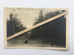 GENAPPE ,CARTE PHOTO GEVAERT » BOUSVAL LES RUINES DE LA MOTTE»Panorama ,animée. - Genappe