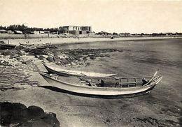 - Ref-W633- Herault - Le Cap D Agde - La Plage Du Mole - Cote Est - Batimernt En Construction - Carte Bon Etat - - Agde
