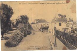"""Hyères Les  Palmiers .  Entrée Et Avenue De Châteaubriand .  """" Usée """" Circulée 1912. - Hyeres"""