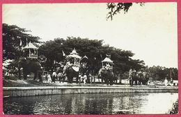 Collection-Singapore (UNC) 1900s Sultan Birthday Procession With Elephants - Photo Postcard - S'pore-cpa Old - Singapore
