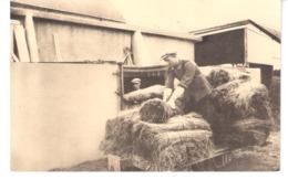 De Vlasteelt In De Vlaanderen-Culture Du Lin-Het Ledigen Vanden Bassin-La Vidange Des Cuves-Werwicq 1944 - Landwirtschaftl. Anbau