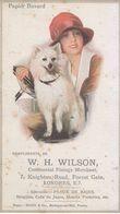 Rare Buvard Ancien Femme Chien Spitz, Illustrateur, Art Déco W.H. WILSON  Londres Dépôt Mory Boulogne S/Mer & Antwerp - Textile & Clothing