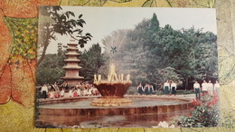 KOREA NORTH 1950s  Postcard - Pyongyang  - Park Samgat - Pioneers - Korea, North
