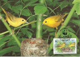 1991 - BARABADOS -  Iles Barbades -  Yellow Warbler - Fauvette Jaune - Barbades