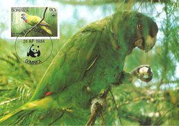 1984 - DOMINICA - Dominique -  Red Necked Parrot -  Peruche à Collier Rouge - Dominique