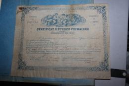 Certificat D'étude Primaire De Poitiers 1885 - Diplomi E Pagelle
