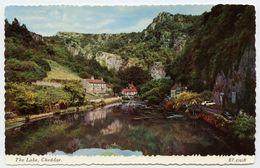 CHEDDAR : THE LAKE - Cheddar