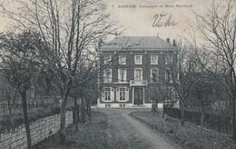 Assesse  Campagne De Mme Marchant Circulé En 1909 - Namur