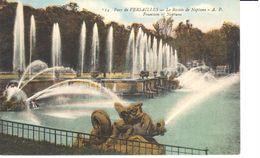 (78) Yvelines - Versailles - CPA - Parc De Versailles - Bassin De Neptune - Versailles (Castillo)