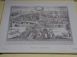 PLANCHE - Gravure - Lyon Au 18e Siècle - Werner - Geographical Maps
