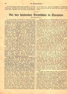 Bei Den Heulenden Derwischen In Sarajewo / Artikel, Entnommen Aus Kalender / Datum Unbekannt - Books, Magazines, Comics
