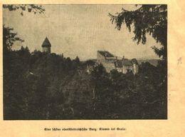 Eine Schöne Oberösterreichische Burg:Klamm Bei Grein / Druck, Entnommen Aus Kalender / Datum Unbekannt - Books, Magazines, Comics