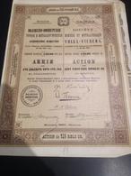 Societe Minière Et Metallurgique Volga-Vichera 1897 - Mijnen