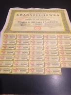 Socièté Franco-Russe Krasnogorowka - Shareholdings