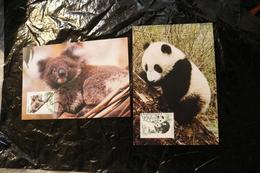 China Australia Joint Issue Panda And Koala Bear Fauna Maximum Card Day Of Issue Cancel 1995 A04s - 1949 - ... People's Republic