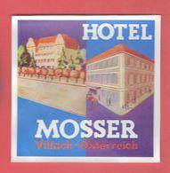 HOTEL MOSER VILLACH OSTERREICH AUTRICHE ETIQUETTE D HOTEL EN TRES BON ETAT - Hotel Labels