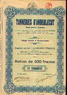 « Tanneries D'ANDERLECHT SA» - Capital : 2.500.000 Fr – Action De 500 Fr - Textiel