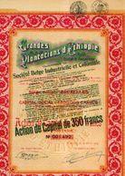 (BRUXELLES) « Grandes Plantations D'Ethiopie » Transformée En « Soc. Belge Industrielle Et Coloniale SA» - ---> - Afrique