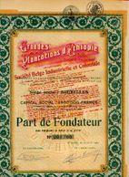 (BRUXELLES) « Grandes Plantations D'Ethiopie » Transformée En « Soc. Belge Industrielle Et Coloniale SA» - ----> - Afrika