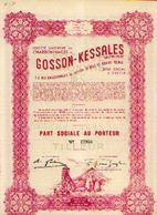(TILLEUR) « Charbonnages De GOSSON-KESSALES SA» – Part Sociale - Mines