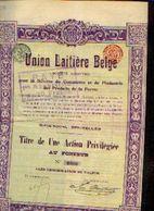 (BRUXELLES) « Union Laitière Belge SA» – Titre D'1 Action Privilégiée - Agriculture
