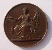 Médaille Bronze - Non Attribuée - 64 Grs - Marqué Bronze Sur La Tranche - - Unclassified