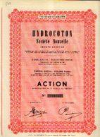 (BOORTMEERBEEK) « HYDROCOTON SA» - Capital 925.000 Fr – Action Au Porteur - Textile