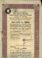 (AMSTERDAM) « N.V. Bantamsche Plantagen Maatschappij SA » - 1 Bewijs Van 1 Aandeel - Agriculture